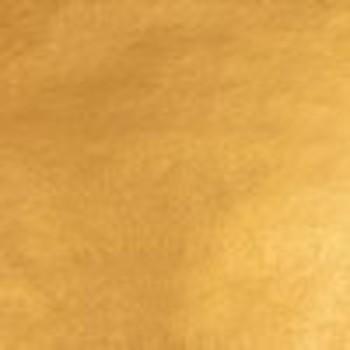Ducate double gold 23 karaat per mm